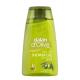 Shower Gel Olive